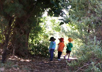 Photo of children walking through nature